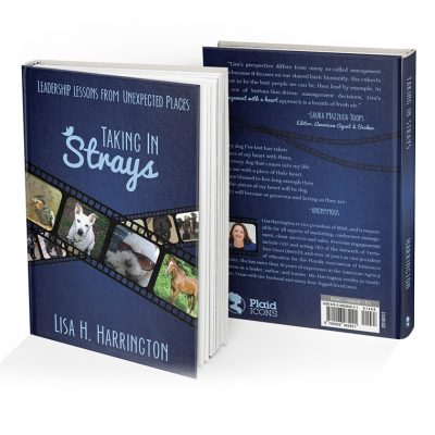 Taking In Strays Book by Lisa H Harrington